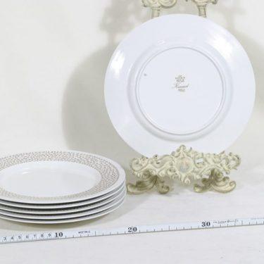 Arabia Kimmel lautaset, 6 kpl, suunnittelija Esteri Tomula, pieni, serikuva kuva 2