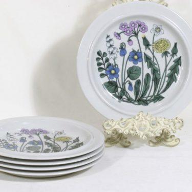 Arabia Flora lautaset, 5 kpl, suunnittelija Esteri Tomula, serikuva