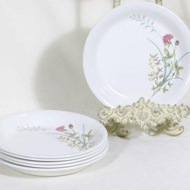 Arabia Pellervo lautaset, pieni, 6 kpl, suunnittelija Raija Uosikkinen, pieni, matala, siirtokuva