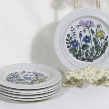 Arabia Flora lautaset, 6 kpl, suunnittelija Esteri Tomula, pieni, serikuva