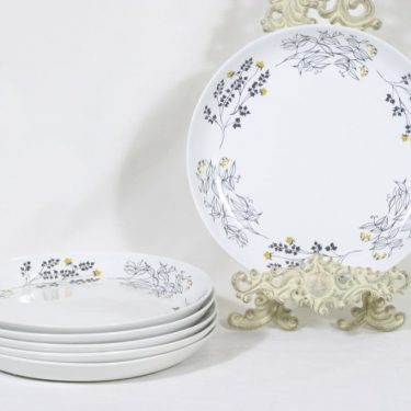 Arabia Hilkka lautaset, matala, 6 kpl, suunnittelija Esteri Tomula, matala, serikuva