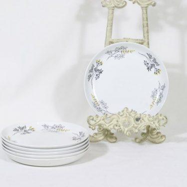 Arabia Hilkka lautaset, pieni, 6 kpl, suunnittelija Esteri Tomula, pieni, matala, serikuva