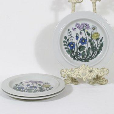 Arabia Flora lautaset, matala, 3 kpl, suunnittelija Esteri Tomula, matala, pieni, serikuva