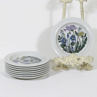 Arabia Flora lautaset, matala, 8 kpl, suunnittelija Esteri Tomula, matala, pieni, serikuva