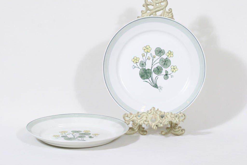 Arabia Suvi lautaset, käsinmaalattu, 2 kpl, suunnittelija Raija Uosikkinen, käsinmaalattu