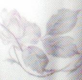 Arabia koristekuvio Jääruusu