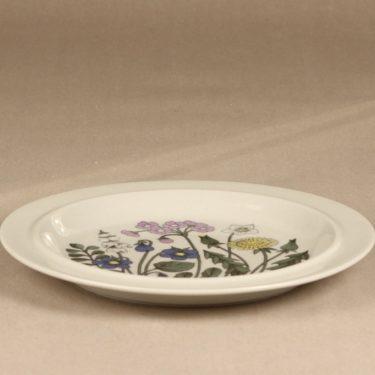 Arabia Flora lautanen, matala, suunnittelija Esteri Tomula, matala, serikuva kuva 2