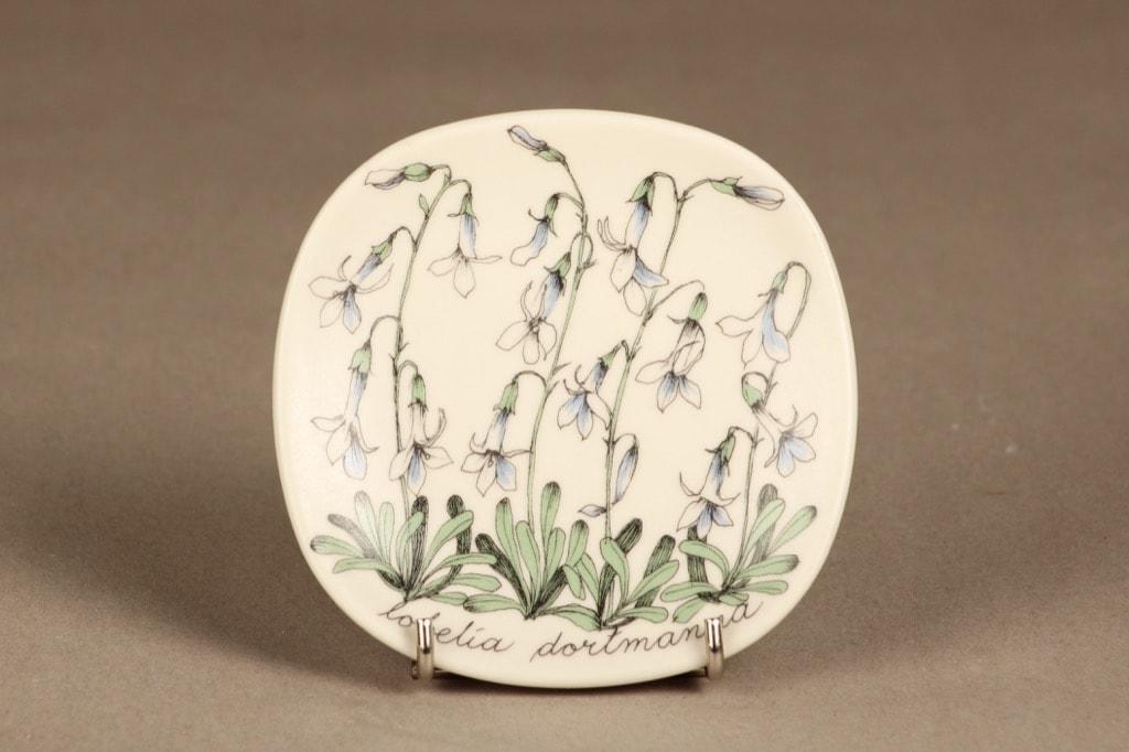 Arabia Botanica koristelautanen, Nuottaruoho, suunnittelija Esteri Tomula, Nuottaruoho, kukka-aihe