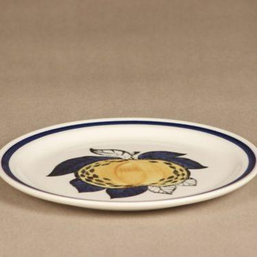 Arabia lautanen, matala, suunnittelija , matala, käsinmaalattu