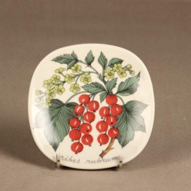 Arabia Botanica koristelautanen, Punainen viinimarja, suunnittelija Esteri Tomula, Punainen viinimarja, serikuva, kukka-aihe