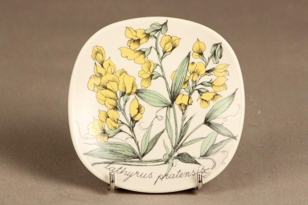 Arabia Botanica koristelautanen, Niittynätkelmä, suunnittelija Esteri Tomula, Niittynätkelmä, serikuva, kukka-aihe