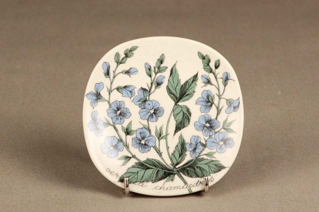 Arabia Botanica koristelautanen, Nurmitädyke, suunnittelija Esteri Tomula, Nurmitädyke, serikuva, kukka-aihe