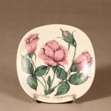Arabia Botanica seinälautanen, Rosa lapponia, suunnittelija Esteri Tomula, Rosa lapponia, serikuva, kukka-aihe