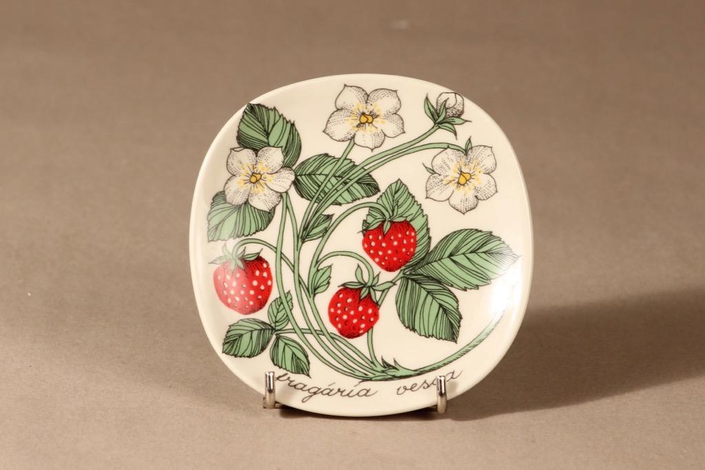 Arabia Botanica wall plate Wild strawberry designer Esteri Tomula