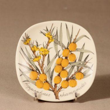 Arabia Botanica wall plate Buckthorn designer Esteri Tomula