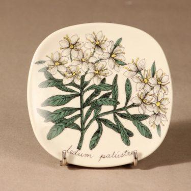 Arabia Botanica wall plate Marsh tea designer Esteri Tomula