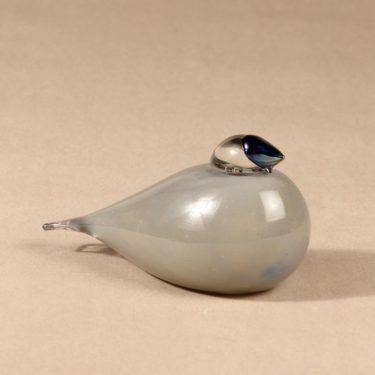 Nuutajärvi lintu , Gray Jay, suunnittelija Oiva Toikka, Gray Jay, signeerattu, erikoislintu kuva 2