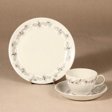 Arabia Tiuku kahvikuppi ja lautaset, suunnittelija , köynnös, oksa