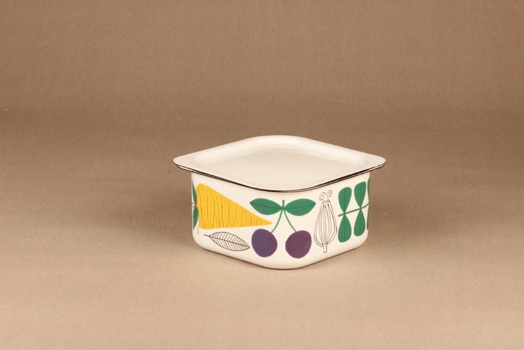 Finel Vegeta fridge box designer Esteri Tomula