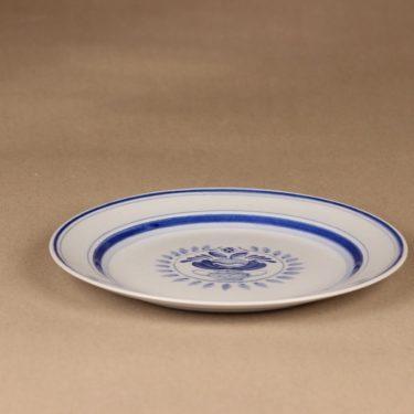 Arabia Blue Rose lautanen, matala 19.5 cm, suunnittelija Svea Granlund, matala 19.5 cm, käsinmaalattu,kukka-aihe kuva 3