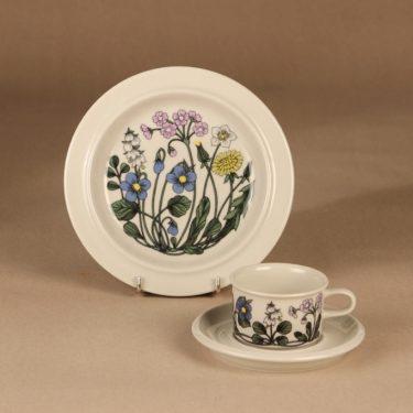Arabia Flora kahvikuppi ja lautaset, monivärinen, suunnittelija Esteri Tomula, serikuva, kukka
