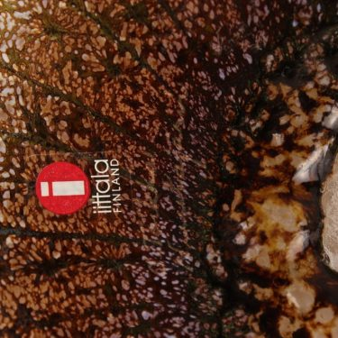 Nuutajärvi lintu , Akkahaikara, suunnittelija Oiva Toikka, Akkahaikara, signeerattu kuva 5