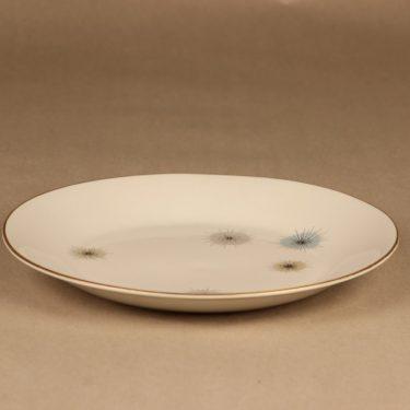 Arabia Jupiter dinner plate designer Raija Uosikkinen