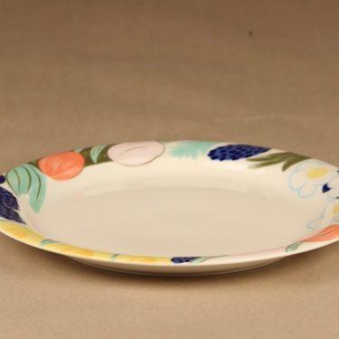 Arabia Poetica dinner plate designer Dorrit von Fieandt 2