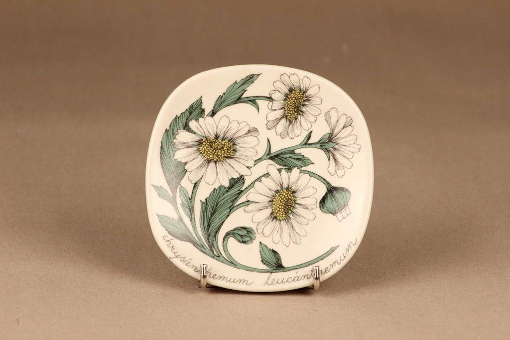 Arabia Botanica koristelautanen, Päivänkakkara, suunnittelija Esteri Tomula, Päivänkakkara, kukka, chrysanthemum leucanhemum