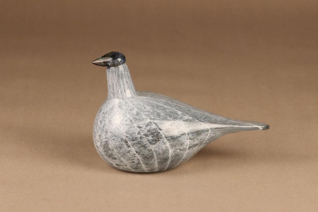 Nuutajärvi bird Arctic Loon Baby designer Oiva Toikka