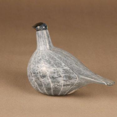 Nuutajärvi lintu , Kuikan poikanen, suunnittelija Oiva Toikka, Kuikan poikanen, signeerattu kuva 3