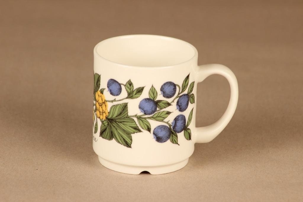 Arabia Botanica mug 30 cl designer Esteri Tomula